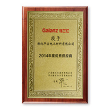 Galanz awarded excellent supplier